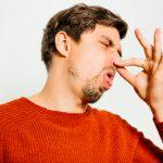 カメムシがいるのに臭いを感じない場合や、臭うのにカメムシはいない?